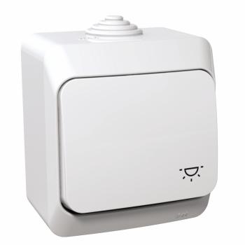 Cedar Plus - jednopolni taster sa simbolom svetla - 16A, beli